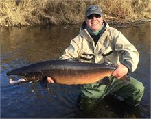 Salmon caught on Bartibog Oct 28