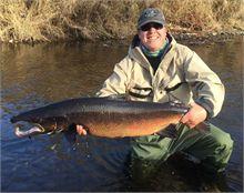 Salmon caught on Bartibog Oct 28