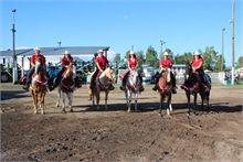 Napan show kicked off on Thursday