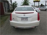 Miramichi Automotives for Sale IMG_623110206
