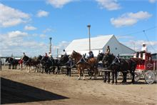 Napan Fair brings the past to present