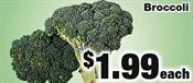 Miramichi's Local Marketplace and Deals broccoli