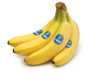 Saint John's Local Marketplace and Deals bananas