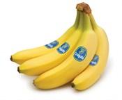 Saint John's Local Marketplace and Deals bananas