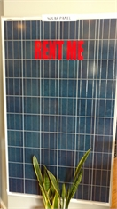 Saint John's Local Marketplace and Deals solar